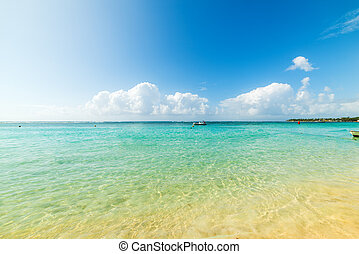Colorful shore in Sainte Anne beach in Guadeloupe, French west indies. Lesser Antilles, Caribbean sea