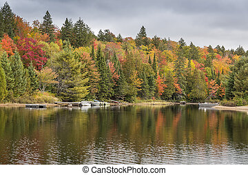 Colorful Shoreline in Autumn with Docked Motorboats - Ontario, Canada
