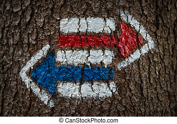 Colorful signs for hiking on the bark of a tree, arrow-shaped