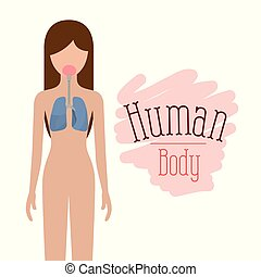 colorful silhouette female person with respiratory system human body vector illustration