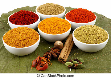 colorful spices powders