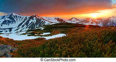 Colorful spring evening in the Carpathian mountains