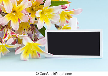 Colorful spring flower bouquet and blank blackboard sign for text, on blue background.