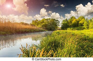 Colorful spring landscape on the misty river