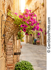 Colorful street in Pienza with detail of flowers, Tuscany, Italy