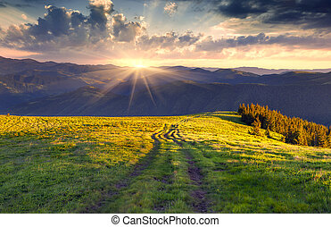 Colorful summer landscape in the mountains. Sunrise....