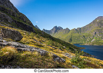 Colorful summer landscape with sharp mountain peaks in Norway.