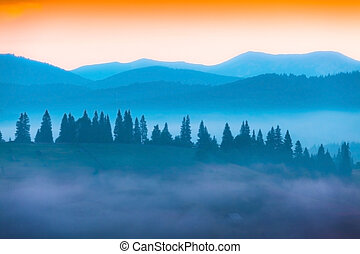 Colorful summer morning in the mountains. Drawing ...