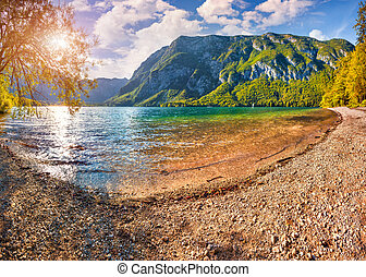 Colorful summer morning on the Bohinj lake in Triglav ...