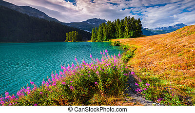 Colorful summer morning on the Champferersee lake