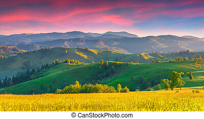 Colorful summer sunrise in the Carpathian mountains with...