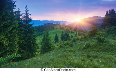 Colorful summer sunset in mountains