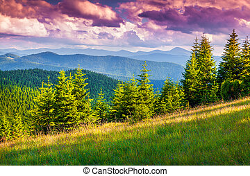 Colorful summer sunset in the Carpathian mountains