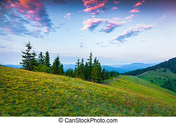 Colorful summer sunset in the Carpathian mountains.