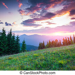 Colorful summer sunset in the Carpathian mountains. Lisniv ...
