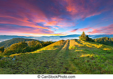 Colorful summer sunset in the mountains.