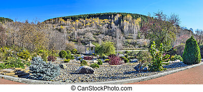 Colorful sunny autumn garden and wooden arbor among stones