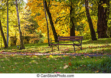Colorful sunny autumn in a park