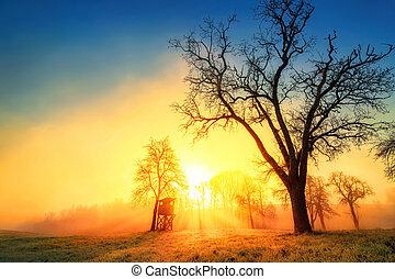 Colorful sunrise in idyllic rural landscape
