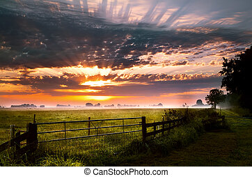 colorful sunrise over rural pasture in Groningen