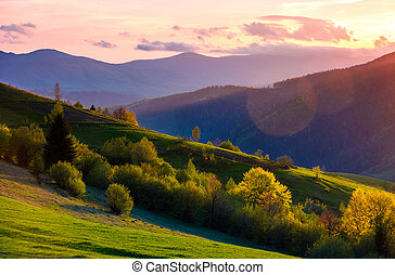 colorful sunset in Carpathian countryside. grassy hillsides...