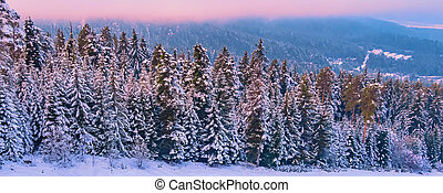 colorful sunset in snow mountains forest