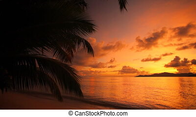 colorful sunset on tropical beach - colorful sunset behind...