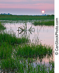 colorful sunset over marshland