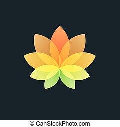 Colorful Translucent Flower on Black Background