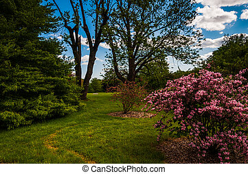 Colorful trees and bushes at Cylburn Arboretum, Baltimore, Maryland.