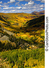 Colorful trees on San Juan mountains scenic area