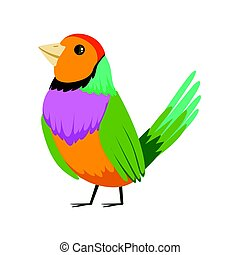 Colorful tropical bird vector Illustration