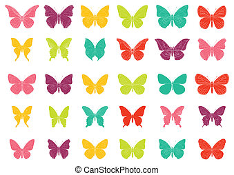 Colorful tropiccal butterfly vectors
