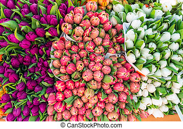 Colorful tulips at a market