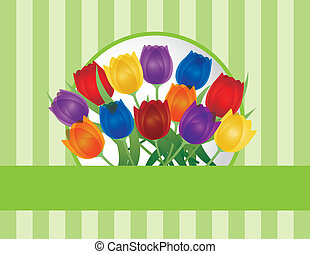 Colorful Tulips Greeting Card Illustration