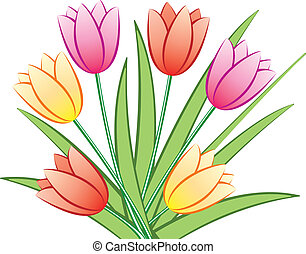 colorful tulips - vector bunch of colorful tulips