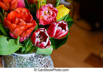 Colorful tulips in a vase