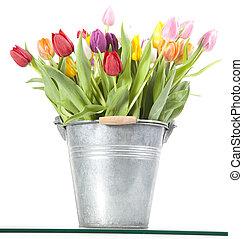 Colorful tulips in metal bucket