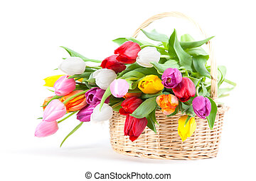 Colorful tulips in straw bucket