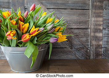 Colorful tulips in vintage bucket
