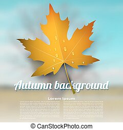 Colorful vector autumn maple leaf with raindrops on blurred abstract background.