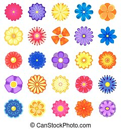 Colorful vector flowers set