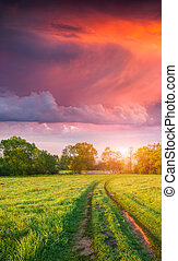 Colorful vertical panorama of the spring meadow with country road