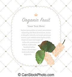 Colorful watercolor texture nature organic fruit memo frame...