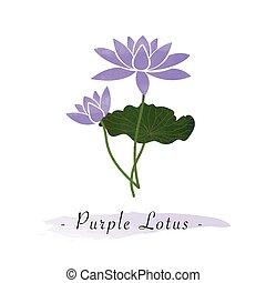 Colorful watercolor texture vector botanic garden flower purple lotus
