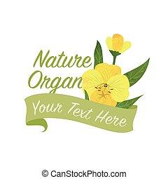 Colorful watercolor texture vector nature botanic garden flower banner yellow evening primrose