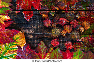 Colorful wet autumn leaves arranged on old wooden table