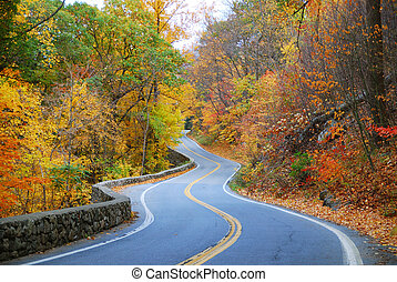 colorful winding Autumn road - Winding road in Autumn woods ...