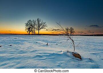 Colorful winter after sunset landscape