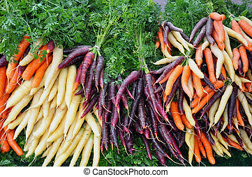 Colorful winter carrots at the market